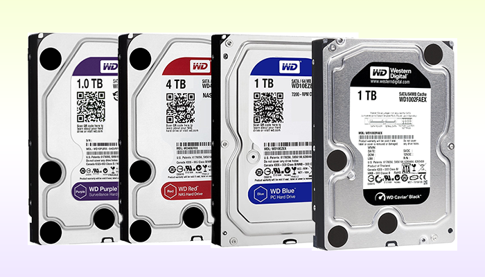 difference between black, blue, red and purple WD SSD and HDD