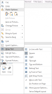 In Line text option in Word