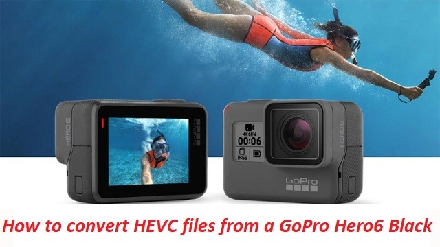 How to Convert GoPro HEVC Videos to H 264 Using HandBrake